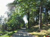 ulica Armii Krajowej Karpacz (fot1)