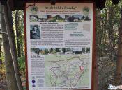 tablica informacyjna Zloty Widok