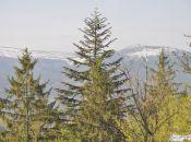 widok na Karkonosze ze Zbójeckich Skał