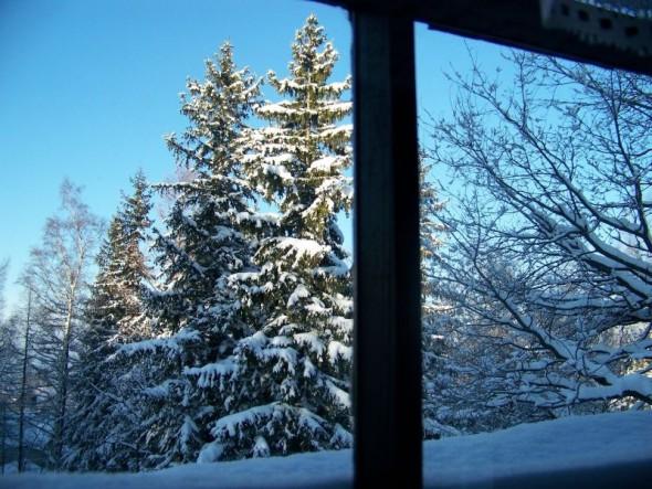 Willa Avita - widok z okna