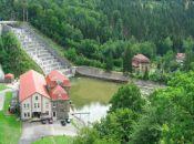 Tama na Jeziorze Pilchowickim-niedaleko Barcinka