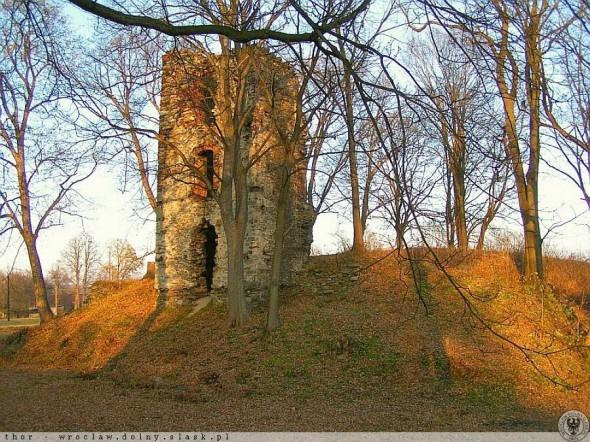 Ruiny zamku w Starej Kamienicy - 1 km od Barcinka