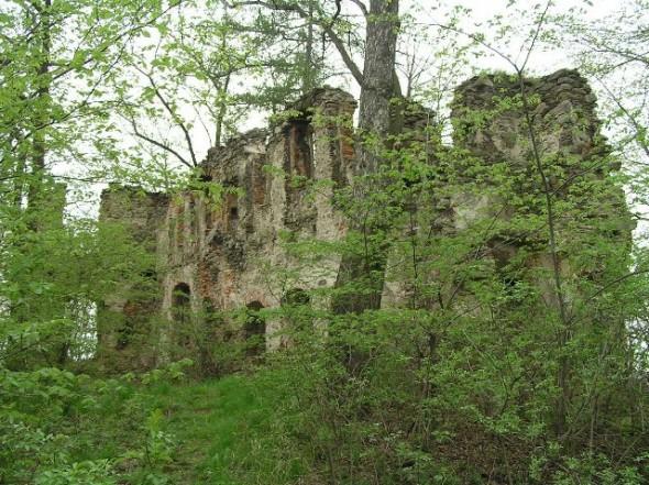 Ruiny zamku w Rybnicy - 3 km od Barcinka