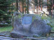 Cmentarz w Borowicach