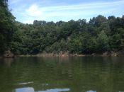 Jezioro w Leśnej