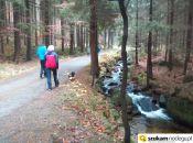 na żółty szlak i potok Janówka