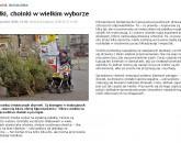 2008 .Jelonka com<br>