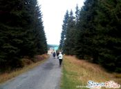 Droga do Schroniska Orle
